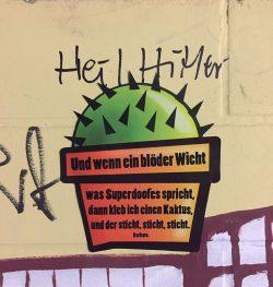 Beispiel-Foto: Kaktus-Kunst von Barbara